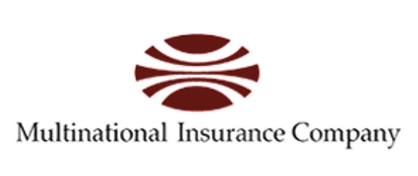 Multinational Insurance Logo